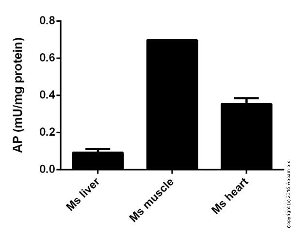 Functional Studies - Alkaline phosphatase(ab83371)