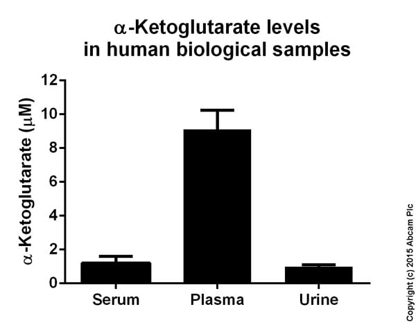 Functional Studies - Alpha Ketoglutarate Assay Kit (ab83431)