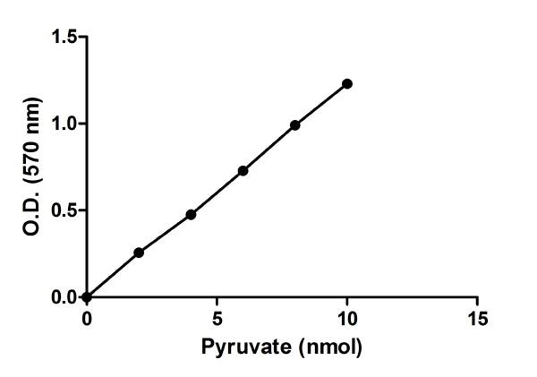 Functional Studies - Pyruvate Kinase (PK) Assay Kit (ab83432)