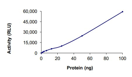 Functional Studies - Recombinant human CDK6 + CCND1 protein (ab84559)
