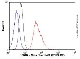 Flow Cytometry - Anti-KCNQ2 antibody [N26A/23] (ab84812)