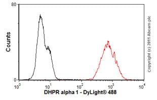 Flow Cytometry - Anti-CACNA1C antibody [L57/46] (ab84814)