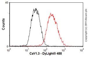 Flow Cytometry - Anti-CaV1.3 antibody [L48A/9] (ab85491)