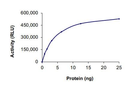 Functional Studies - Recombinant human ErbB 4 protein (ab85602)