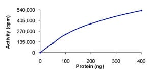 Functional Studies - Recombinant human DCLK2 protein (ab85758)