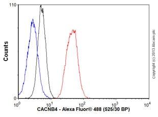 Flow Cytometry - Anti-CACNB4 antibody [N10/7] (ab85788)