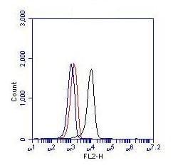 Flow Cytometry - Anti-Bcr antibody (ab86173)