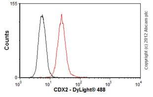 Flow Cytometry - Anti-CDX2 antibody [CDX2-88], prediluted (ab86949)