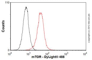 Flow Cytometry - Anti-mTOR antibody [53E11] (ab87540)