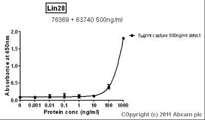 Sandwich ELISA - Recombinant Human Lin28 protein (ab89225)