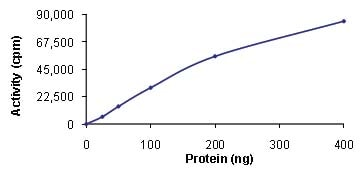 Functional Studies - Recombinant human TTK/Mps1 protein (ab89589)