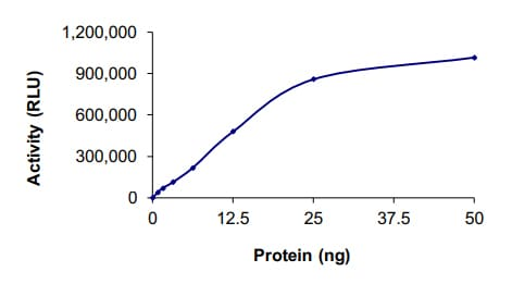 Functional Studies - Recombinant human JAK3 protein (ab89756)