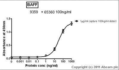 Sandwich ELISA - Anti-BAFF antibody (ab9359)