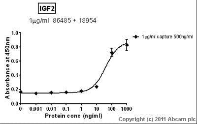 Sandwich ELISA - Recombinant human IGF2 protein (ab9575)