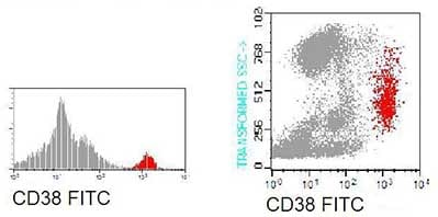 Flow Cytometry - Anti-CD38 antibody [GR7A4] (FITC) (ab90877)