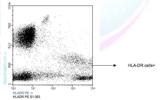 Flow Cytometry - Anti-HLA-DR antibody [GRB-1] (Phycoerythrin) (ab91334)