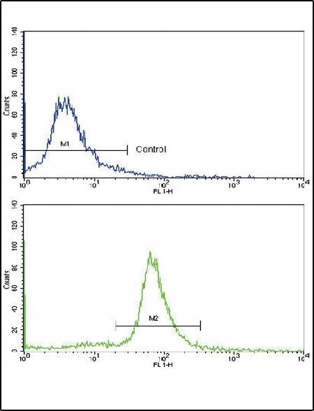 Flow Cytometry - Anti-Ornithine Carbamoyltransferase/OTC antibody (ab91418)