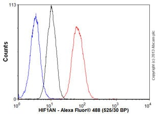 Flow Cytometry - Anti-HIF1AN/FIH-1 antibody [EPR3659] (ab92304)