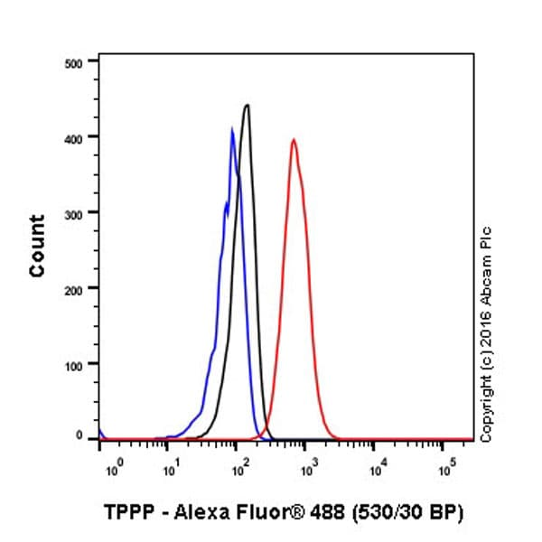 Flow Cytometry - Anti-TPPP antibody [EPR3316] (ab92305)
