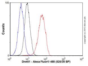 Flow Cytometry - Anti-Dnmt1 antibody [EPR3522] (ab92314)