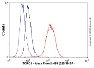 Flow Cytometry - Anti-TORC1 antibody [EPR3382] (ab92477)