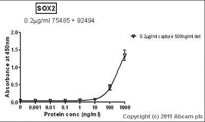 Sandwich ELISA - Anti-SOX2 antibody [EPR3131] (ab92494)