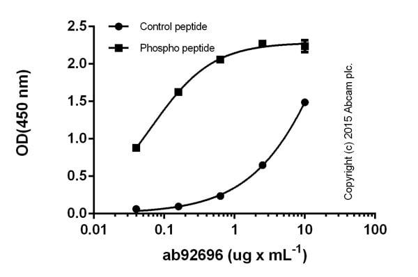 ELISA - Anti-Pyruvate Dehydrogenase E1-alpha subunit (phospho S293) antibody (ab92696)