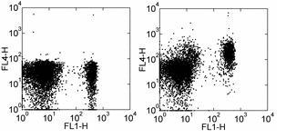 Flow Cytometry - APC Anti-CCR7 antibody [4B12] (ab93518)