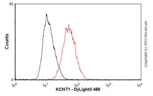 Flow Cytometry - Anti-KCNT1/SLACK antibody [N3/26] (ab94578)