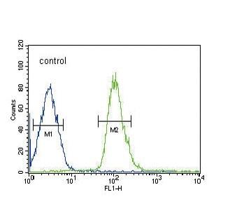 Flow Cytometry - Anti-DUSP2/PAC1 antibody (ab95159)