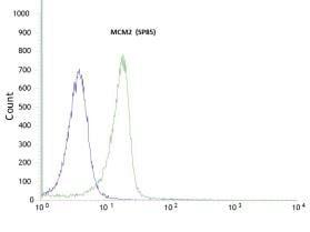 Flow Cytometry - Anti-MCM2 antibody [SP85], prediluted (ab95362)