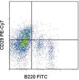 Flow Cytometry - PE/Cy7® Anti-Integrin beta 1 antibody [HMb1-1] (ab95622)