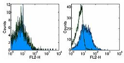 Flow Cytometry - Biotin Anti-RANKL antibody [IK22/5] (ab95720)