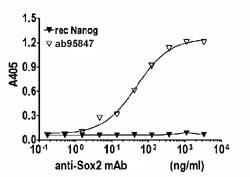 Indirect ELISA - Recombinant Human SOX2 protein (ab95847)