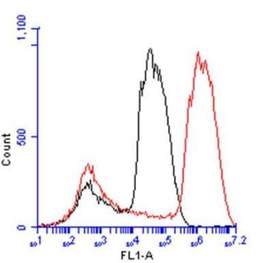 Flow Cytometry - Anti-Liver Arginase antibody (ab96183)