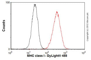 Flow Cytometry - Goat Anti-Rabbit IgG H&L (DyLight® 488) preadsorbed (ab96899)