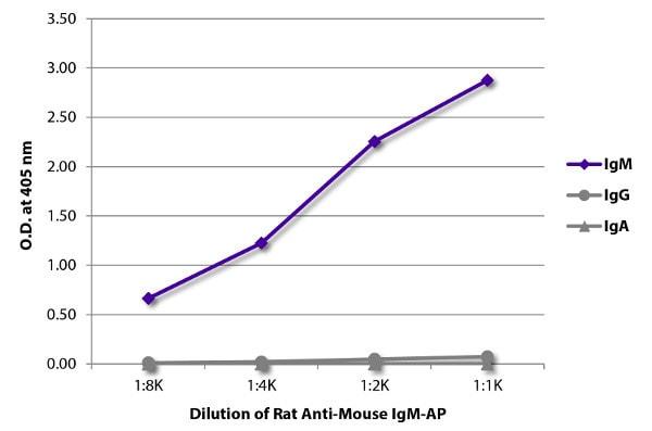ELISA - Rat monoclonal [SB73a] Anti-Mouse IgM mu chain (Alkaline Phosphatase) (ab99589)