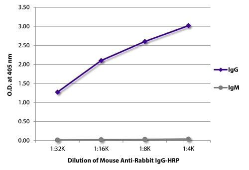 ELISA - Mouse monoclonal [2A9] Anti-Rabbit IgG heavy chain (HRP) (ab99702)